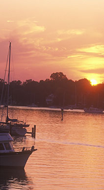 Annapolis Harbor at Sunset